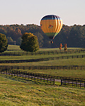A hot air balloon is tethered to a nearby tree, waiting for a favorable wind over a distant field at the annual Winchester Balloon Festival.  Long Branch Farm, Winchester, Virginia, USA.  © RickCollier.com.