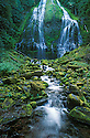 Lower Proxy Falls, Three Sisters Wilderness, Willamette National Forest, .Cascade Mountains, Oregon.