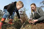Foto: VidiPhoto<br /> <br /> DOORNENBURG - Tientallen kinderen van basisschool De Doornick in het Gelderse Doornenburg, gingen woensdag aan de slag om de omgeving van het kasteel te beplanten met 750 haagbeuken in twee rijen naast elkaar. Tegelijk met de Provinciale Statenverkiezingen werden woensdag door het hele land tijdens Boomfeestdag 200.000 nieuwe boompjes neergezet. Thema is dit jaar Bomen &amp; Water. De start van de Boomfeestdag was in Almere in aanwezigheid prinses Laurentien en staatssecretaris Sharon Dijksma. Aan de boomfeestdag dezen ruim 300 gemeenten en zo'n 100.000 kinderen mee. Foto: De driejarige Kas Perquin uit Huissen was woensdag vermoedelijk het jongste boomplantertje.
