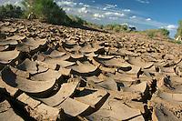 Mongolia  paesaggio desertico<br /> <br /> Mongolian desert landscape <br /> Mongolie paysage d&eacute;sertique