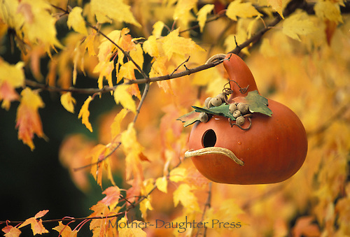 Birdhouse made of gourd and acorns in fall