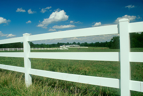 White fence with blue sky at the horse farm