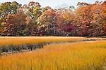 Rhode Island Nature