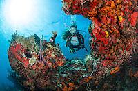 Alex Krasny MR.Little St. James.U.S. Virgin Islands