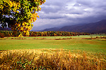 TN: Tennessee Great Smoky Mountains National Park, Mtns, Cades Cove, Fall color          .Photo Copyright: Lee Foster, lee@fostertravel.com, www.fostertravel.com, (510) 549-2202.Image: tnsmok216