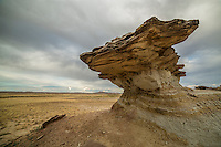 Sandstone hoodoo in the Bighorn Basin of Wyoming