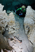 RX0306-D. scuba diver (model released) finds bones of an animal in a flooded underground chamber accessed via a cenote in the Mexican jungle. Riviera Maya, Yucatan Peninsula, Mexico.<br /> Photo Copyright &copy; Brandon Cole. All rights reserved worldwide.  www.brandoncole.com