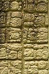 Maya glyphs on a stela at the Mayan ruins of Copan, Honduras. Copan is a UNESCO World Heritage Site.