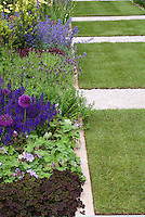 Veronica, Salvia, Trifolium, Geranium, Allium, neatly trimmed edges garden perennial border with cement lawn mowing strips, lawn grass, purple and lavender color theme with green