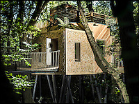 BNPS.co.uk (01202 558833)<br /> Pic: Mallinson/BNPS<br /> <br /> Release your inner Tarzan...in Britain's poshest treehouse.<br /> <br /> A luxury glamping site in deepest Dorset has created a luxurious treehouse that comes with its own sauna, hot tub, rotating fireplace and pizza oven.<br /> <br /> The Woodsman's Treehouse is perched 30ft from the ground on long stilts and has two floors. <br /> <br /> It has a spiral staircase and a stainless steel slide for quick access to the ground and can be rented out from &pound;390 a night. <br /> <br /> It is located at the Crafty Camping glamping site at Holditch in west Dorset.