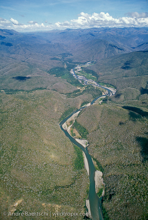 Inter-Andean dry tropical forest along the upper Rio Tuichi around 1000 m, view upriver towards the Rio Machariapo valley, dry season, Madidi National Park, La Paz, Bolivia.