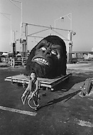 Queens, NYC, November 1976 — After the remake of the movie King Kong in New York, the props used in the film get loaded into an Air France cargo plane.