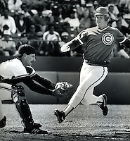 San Franciso Giant catcher Bob Brenly ready to tag out Chicago Cub Jody Davis on attempt squeeze play.<br />(photo May,1986 by Ron Riesterer)