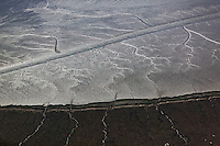aerial photograph tidal wetlands mud flats San Francisco bay
