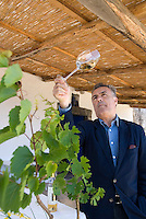 Salina, Eolian Islands, Italy, June 2006. Dr Vincenzo Valenti tests his wines. The Giona Malvasia wines of Salina are among the best in its sort. The Volcanic Eolian Islands of Southern Italy offer a spectacular landscape for trekking while staying in picturesque towns. Photo by Frits Meyst/Adventure4ever.com