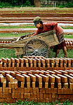 A girl loading a trolley of bricks from a kiln in Sainyabuli province, Laos.