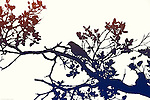 The silhouette or the paper cut of a bird sitting in the branches of a tree.