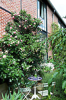 Climbing roses have been planted to soften the industrial aspect of the old factory