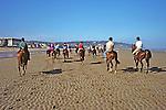 Riding Horses On Beach Along