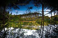 Walker Pond, Wells State Park, Sturbridge, Massachusetts, US