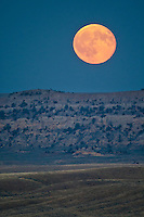 Full moon rising over the Bighorn Basin of Wyoming
