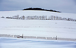..Winter scene with snow fence and farmers field in western Dane County, in Wisconsin.