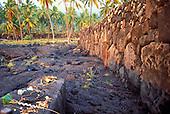 Hawaiian ofering stone at Puu Honua O Honaunau, a religious place of worship and sacrifice