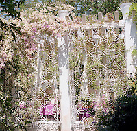A star-shaped grille overgrown with pale pink bougainvillea shields one of several terraces around the property