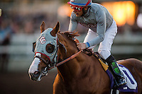 12-17-16 The Winter Challenge Stakes