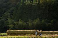 Rural Japan: Open Edition Prints