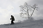 A skier descends on an ungroomed run at Grand Hirafu resort in the Niseko ski region of Hokkaido, Japan on Feb. 9 2010. Niseko is made up of 57 runs  totaling over 47 km in groomed slopes and is the only resort area in Japan where off-piste skiing and boarding is legal.