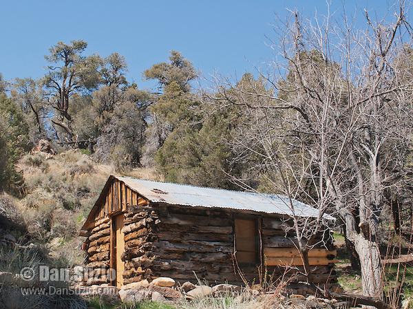 Hunter cabin death valley dan suzio photography for Cabins near hunter mountain