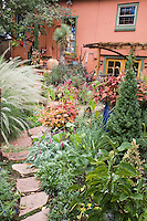 The colored walls of the house provide a backdrop for everything else that goes on in Dan Johnson's Denver back yard garden.