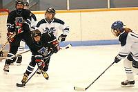 Badger State Winter Games '08 - Peewee Hockey - Appleton vs McFarland