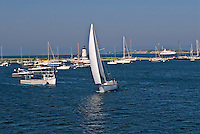 Massachusetts, Martha's Vineyard, Edgartown, Boat Sailing Harbor