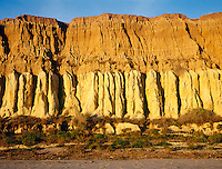WEATHERED ROCK FORMATION<br /> Sedimentary Strata<br /> San Onofre, San Diego, CA