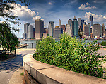 Brooklyn Views