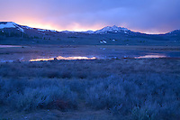 Last light of a sweet May day on Swan Lake Flats, above Mammoth Hot Springs, Yellowstone NP