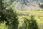 The Trail Creek beaver ponds near Sun Valley, Idaho