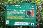 Park Sign, Masoala National Park, Madagascar, largest of the island's protected areas, UNESCO World Heritage Site, Masoala peninsula is exceptionally diverse due to its huge size, and variety of habitats