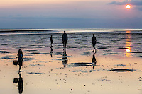 A family explores Breakwater beach at low tide on Cape Cod, MA.