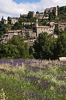 Europe/France/Rhône-Alpes/26/Drôme/Montbrun-les-Bains: Le village médiéval sur le plateau d'Albion