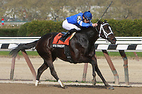 Favorite It's Tricky with Eddie Castro aboard shows her class winning the Grade II Distaff Handicap for fillies and mares, 3-year olds & up, going 7 furlongs, at Aqueduct.  Trainer Kiaran McGlaghlin.  Owners Godolphin Stables