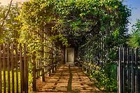 New Harmony Vine Arbor