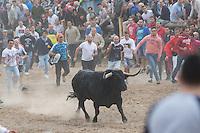 "Tournament of ""toro de la vega"" at Tordesillas"