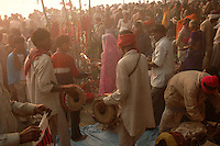 Hindu pilgrims are worshiping sun god on the bank of Gandak river during Sonepur fair. Bihar, India, Arindam Mukherjee.