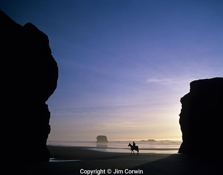 Exploring and enjoying the Oregon Coast