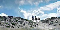 Horses from the local riding stables are exercised along the sand dunes on the Troia peninsula