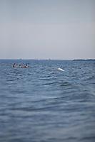 SEA_LOCATION_80269
