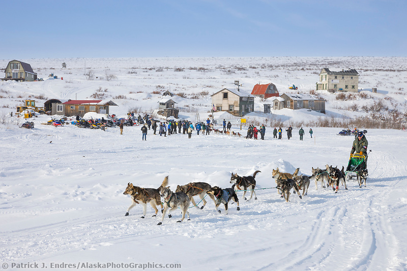 Musher Jeff King departs Candle, the half way point of the 2008 All Alaska Sweepstakes sled dog race.